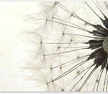 murando® Fototapete 400x280 cm - Vlies Tapete -