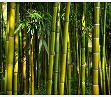 murando Fototapete Bambus 400x309 cm Vlies Tapeten