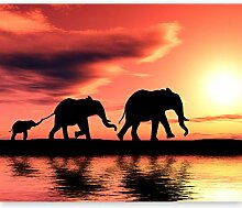 murando Fototapete Elefanten 300x231 cm Vlies