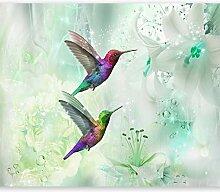 murando - Fototapete Kolibri 200x140 cm - Vlies