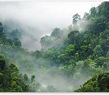 murando - Fototapete selbstklebend Dschungel 49x35