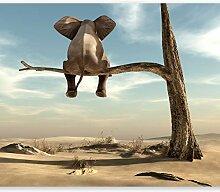 murando Fototapete selbstklebend Elefant auf dem