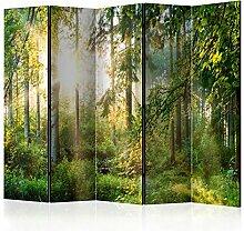 murando Raumteiler Foto Paravent Wald 225x172 cm
