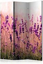 murando Raumteiler Lavendel Natur Wiese Foto