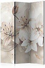 murando Raumteiler Lilien Abstrakt Foto Paravent