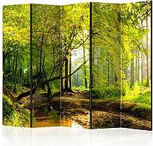 murando Raumteiler & Pinnwand Foto Paravent Natur