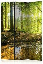 murando Raumteiler & Pinnwand Foto Paravent Wald