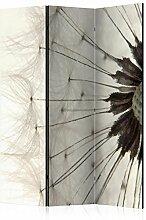 murando Raumteiler Pusteblume Foto Paravent