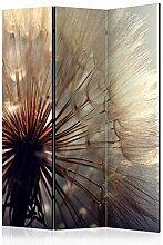 murando Raumteiler Pusteblume Natur Foto Paravent
