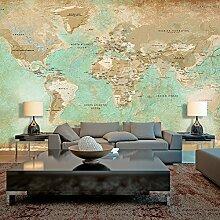 murando - Vlies Fototapete 500x280 cm Größe Format 5m - Vlies Tapete - Moderne Wanddeko - Design Tapete - Weltkarte Karte k-A-0105-x-a