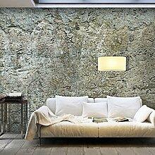 murando - Vlies Fototapete 500x280 cm - Vlies Tapete - Moderne Wanddeko - Design Tapete - modern Beton Mauer grau f-A-0490-x-b