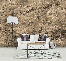 murando - Vlies Fototapete 700x280 cm - Größe Format 7m - Vlies Tapete - Moderne Wanddeko - Design Tapete - Beton f-A-0547-x-k