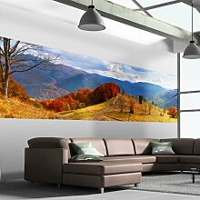 murando - Wand Bilder Deko Panel XXL 340x100 cm Vlies Tapete - Poster - Panoramabilder - Riesen Wandbilder - Dekoration - Design - Fototapete - Wandtapete - Wanddeko - Wandposter Natur 110203-7
