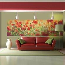 murando - Wand Bilder Deko Panel XXL 340x100 cm Vlies Tapete - Poster - Panoramabilder - Riesen Wandbilder - Dekoration - Design - Fototapete - Wandtapete - Wanddeko - Wandposter Blumen 110206-5