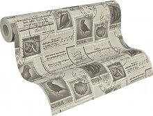 Mustertapeten - Mustertapete A.S. Création Tapete Dekora Natur 6 Graubeige, Umbragrau, Signalweiß