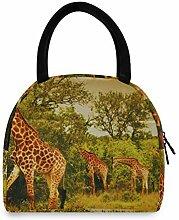 Mutter Lunchbox Bild Südafrikanische Giraffen