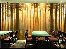 Muzemum Wald Fototapete - Vlies Wand Tapete
