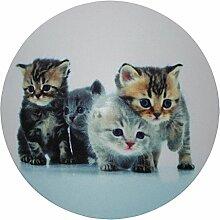 my bumpy Images Türstopper / Briefbeschwerer, Tür Halter, Katzenparade / Cats Parade, H 2,5 cm, Ø 13 cm, 2320
