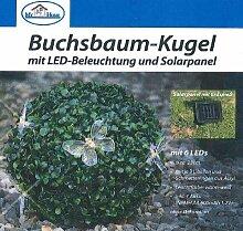 My Home Buchsbaumkugel mit 6 LED´s