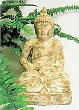 My Home Buddha-Statue