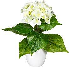 my home Künstliche Zimmerpflanze Leana B/H: 23 cm