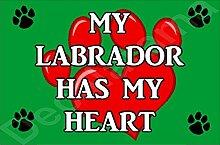 My Labrador Hat My Heart Hund Puppy Kühlschrankmagnet Geschenk/Geschenk