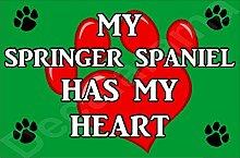 My Springer Spaniel Hat My Heart Hund Puppy Kühlschrankmagnet Geschenk/Geschenk