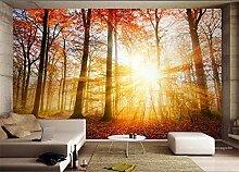 MYLOOO Fototapete Herbstsonnenschein Wald Tapete