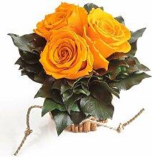 Natürliches Blumengesteck im Zimtbecher 3 Rosen