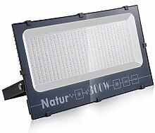Natur 300W LED Strahler,30000LM Superhell
