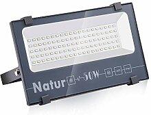 Natur 50W LED Strahler, 5000LM Superhell