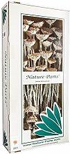 Nature Parts Compacta Rosette medium in