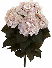 """Nearly Natural 20"""" Fall Hydrangea Artificial"""