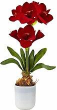 Nearly Natural 4878 Amaryllis Blumenarrangement
