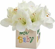 Nearly Natural Amaryllis Künstliche Vase,