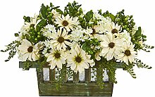 Nearly Natural Daisy Artificial Arrangement in