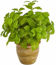 Nearly Natural Künstliche Basilikum-Pflanze,