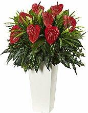 Nearly Natural Künstliche Pflanze, Anthurium, in