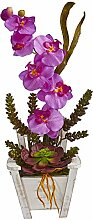 Nearly Natural Phalaenopsis Orchid & Succulent