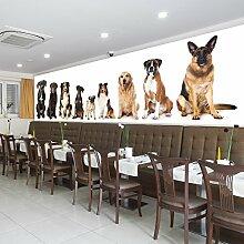 Nette Hunde Wandbild Haustiere Tier Foto-Tapete Kinder Schlafzimmer Haus Dekor Erhältlich in 8 Größen Riesig Digital