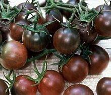 New Home Garten Pflanzen 5 Samen Frische soursop Fruchtsamen