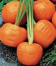 New Seeds 2015 Super-günstig! 100 Samen / Pack - INDIGO ROSE Black Tomato Samen Fruchtgemüsesamen, # WKO3E2