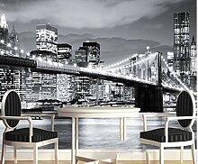 New York City Nacht Naturlandschaft 3D Wandbild
