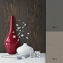 NEWROOM Tapete grau Vliestapete schwarz natur grafisch,Modern schöne moderne und edle Design Optik , inklusive Tapezier Ratgeber