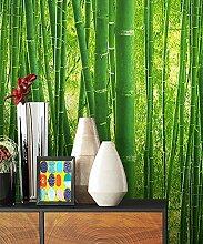 NEWROOM Tapete Grün Papiertapete Natur Natur,Wald schöne moderne und edle Design Optik , inklusive Tapezier Ratgeber
