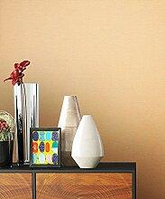 NEWROOM Tapete Orange Vliestapete Unis schöne moderne und edle Design Optik , inklusive Tapezier Ratgeber