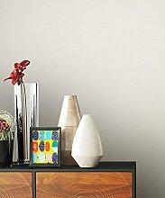 NEWROOM Tapete weiß Vliestapete Modern,universell schöne moderne und edle Design Optik , inklusive Tapezier Ratgeber