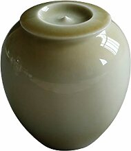 NHP Pflanzen Sie Asche Keramik Teedosen,
