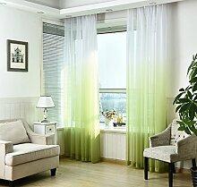 NIBESSER Vorhänge Transparent Schlaufenschal