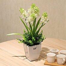 NOHOPE Hyazinthe Emulation Blume mit Keramik Vasen